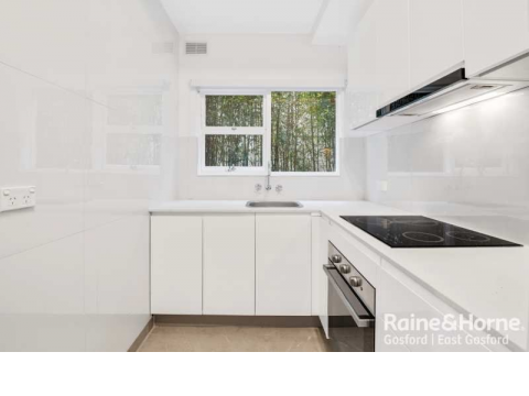 Completely Renovated One Bedroom Apartment