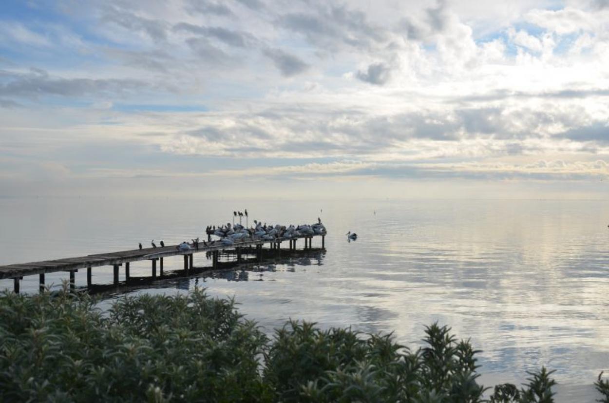 Duplex coming soon to Pelican Shores - register your interest