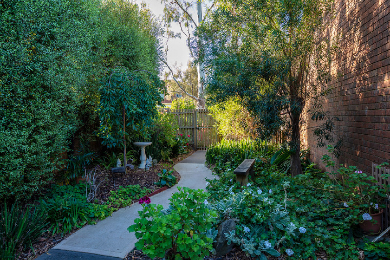 Immaculate home with a north facing back yard
