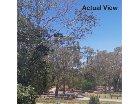 Sensational Parkland Views