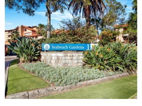 Unique Opportunity - Seabeach Gardens- $475 per week