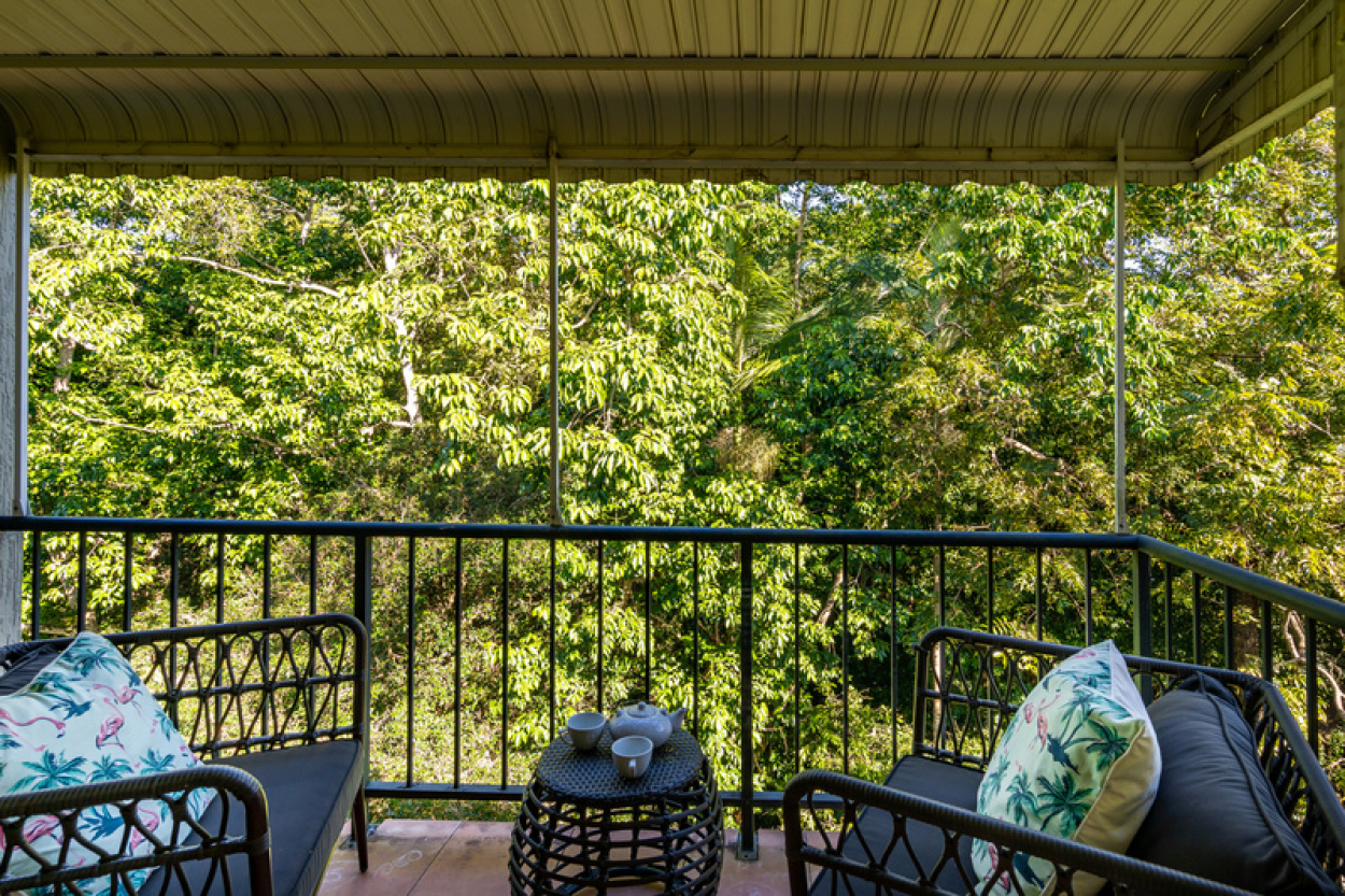 Serviced apartment in convenient location with rainforest view