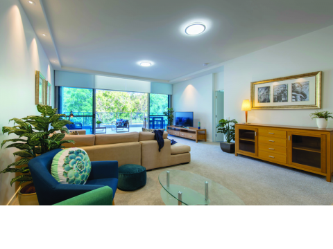 Apartment 137 – Amber