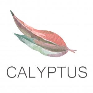 Calyptus Co-living