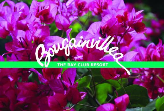 Bougainvillea The Bay Club Resort