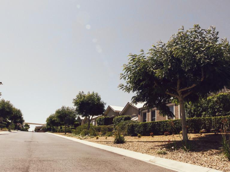 Fig Tree Village