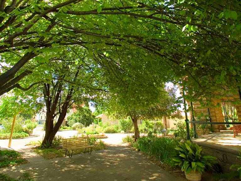 Aveo Ackland Park